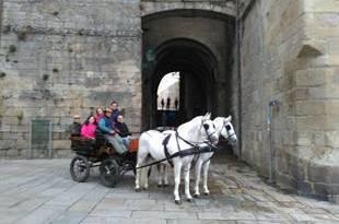 Caminho de Santiago Compostela em Atrelagem