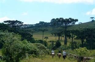 Cavalgada na Coxilha Rica - 13 de junho
