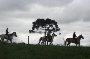 Cavalgada nos Campos Gerais do PR - 14 de janeiro