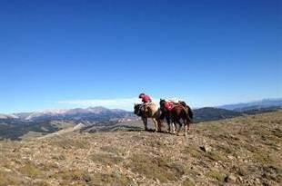 Expedi��o a Cavalo Al�m das Fronteiras - Argentina/Chile