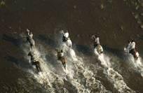 Cavalgadas velozes e/ou desafiadoras