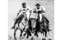 3º lugar Categoria Cavalo em Esportes