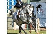 2º lugar Categoria Cavalo em Esportes
