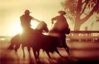 1º lugar Categoria Cavalo em Esportes