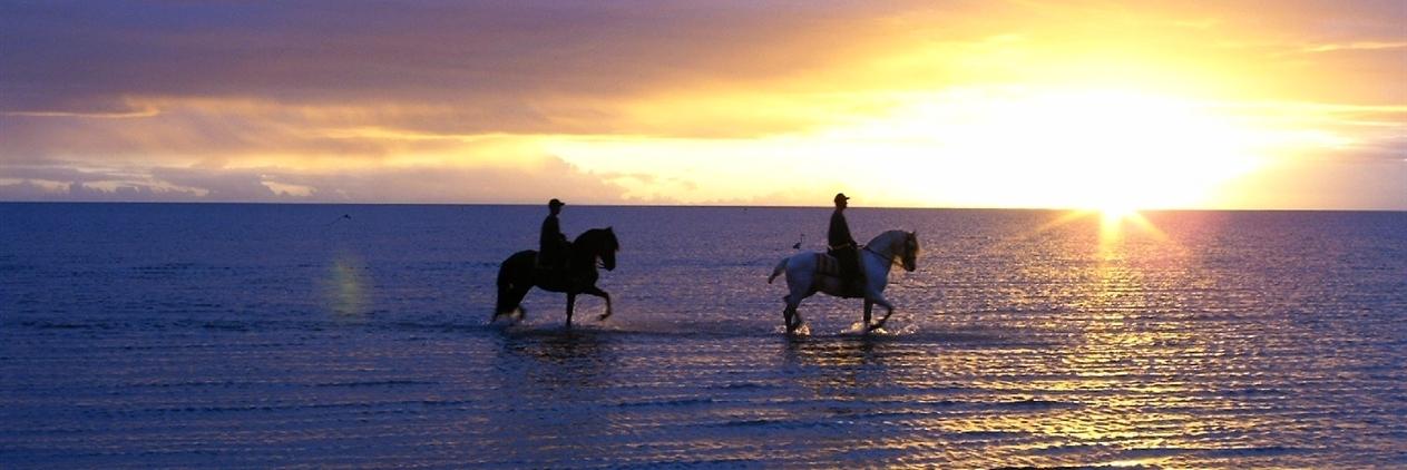 Cavalgada de Mar a Mar