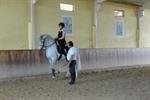 Clinicas - Horsemanship - Adestramento/Dressage � Doma Vaqueira � Polo