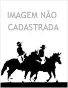 Relação de peso cavalo/cavaleiro para cavalgada