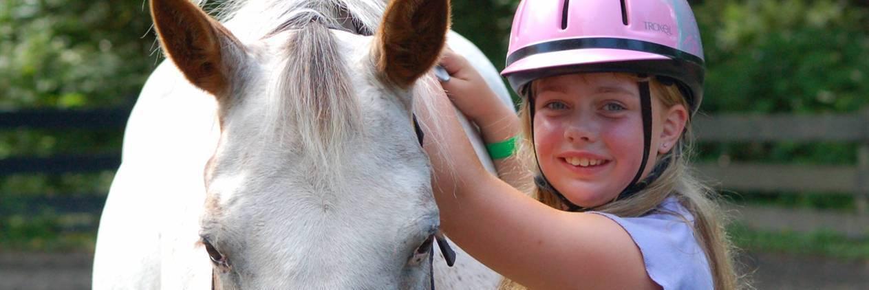 Ferias a Cavalo