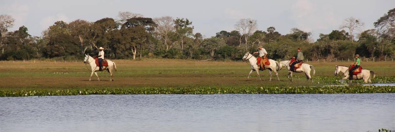 Cavalgada Pantaneira