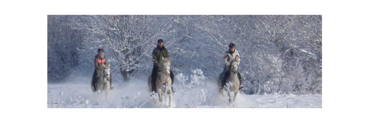 Cavalgada na Neve