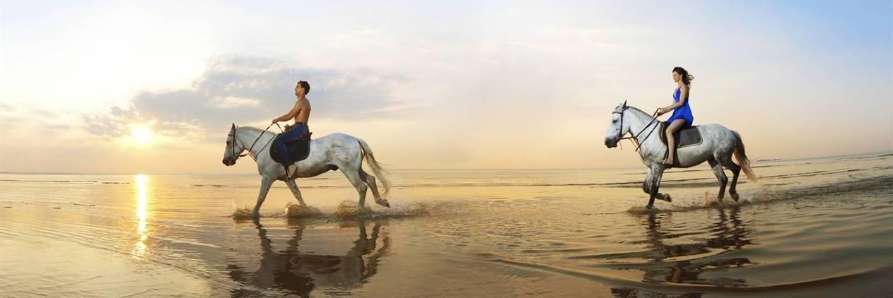 Grecia - Cavalgada dos Centaurus