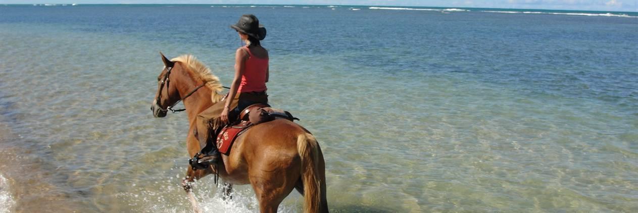 Cavalgada das praias - Trancoso/Outeiro/Caraiva