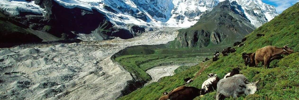 Expedicão Tibete