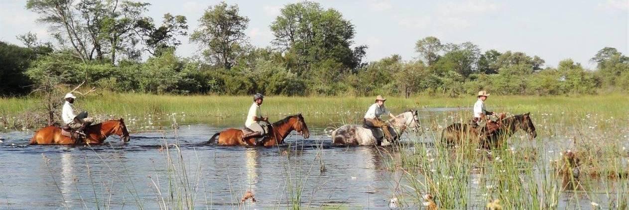 Okavango Selinda Spilway Safari