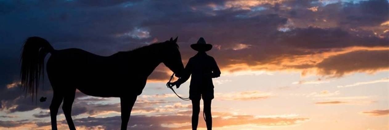 Cavalgada No Outback country