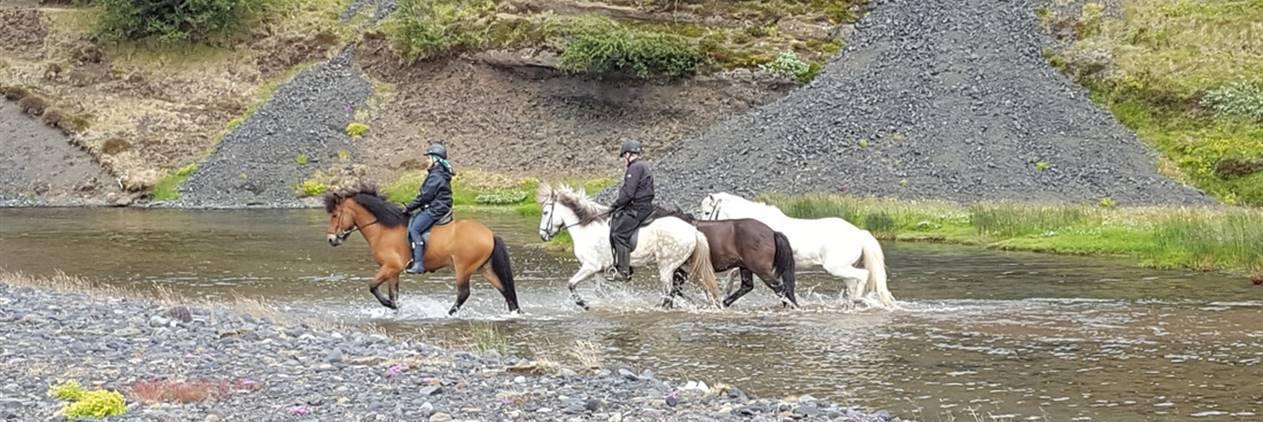 Marchando entre Glaciares na Islândia