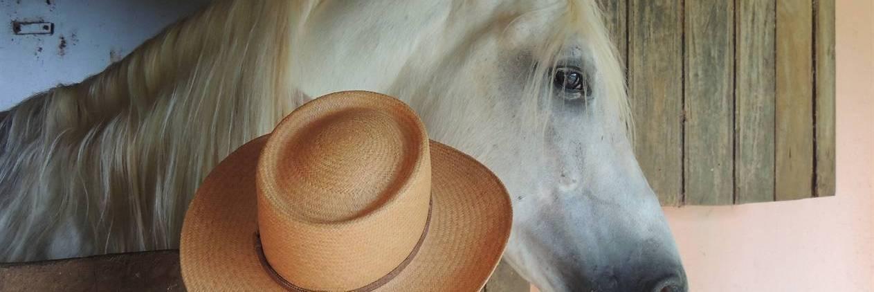 Cavalgada no Berço do Mangalarga Marchador- Estrada Real