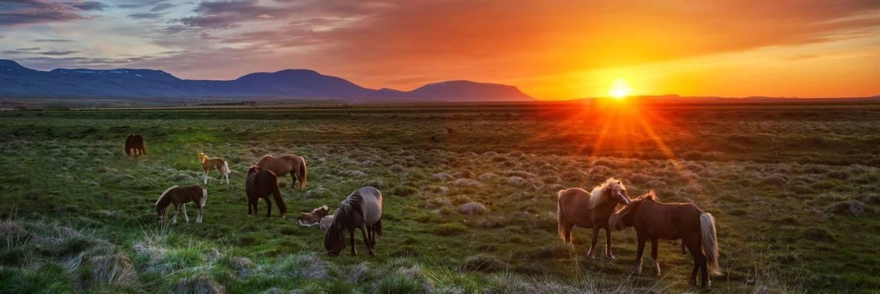 Travessia na Islandia