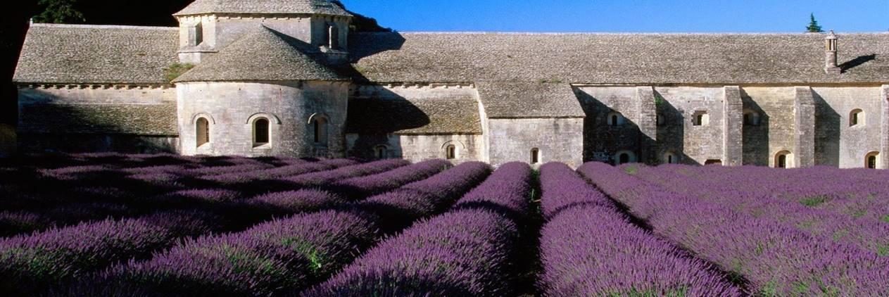 O Melhor da Provence